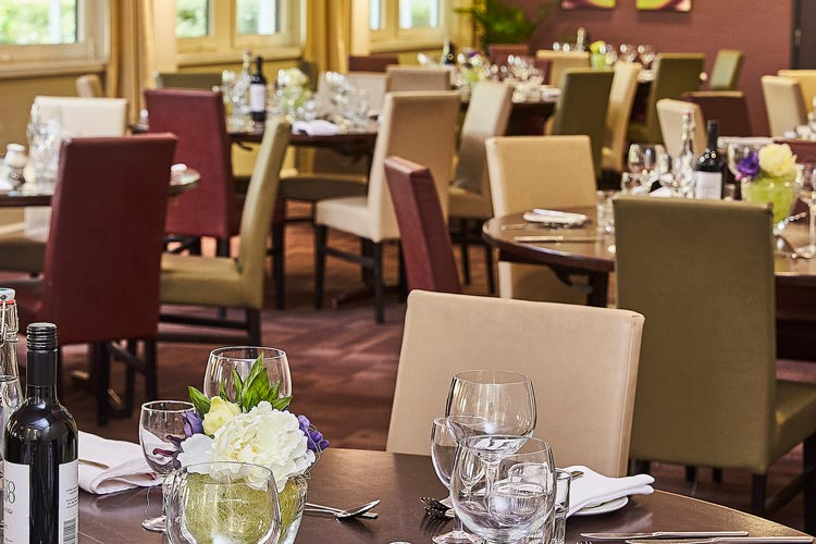 Restaurant with table and chairs prepared for diners